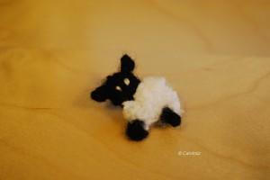 mouton woolkiss carofoliz